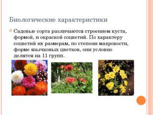 Биологические характеристики Садовые сорта различаются строением куста, формо