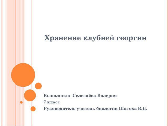 Хранение клубней георгин Выполнила Селезнёва Валерия 7 класс Руководитель учи...