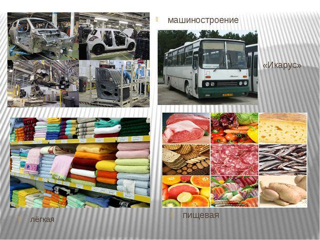 пищевая «Икарус» машиностроение лёгкая