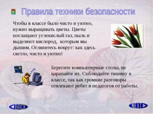 Чтобы в классе было чисто и уютно, нужно выращивать цветы. Цветы поглащают уг