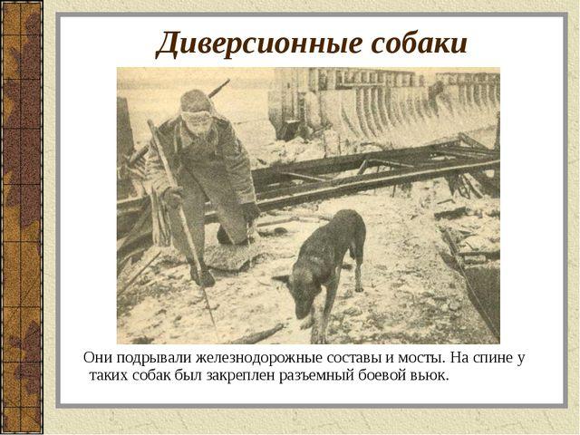 Диверсионные собаки Они подрывали железнодорожные составы и мосты. На спине у...