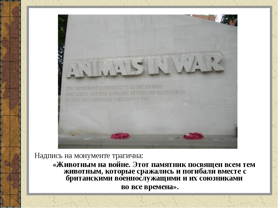 Надпись на монументе трагична: «Животным на войне. Этот памятник посвящен все...