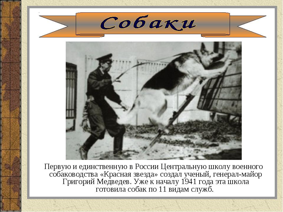 Первую и единственную в России Центральную школу военного собаководства «Кра...