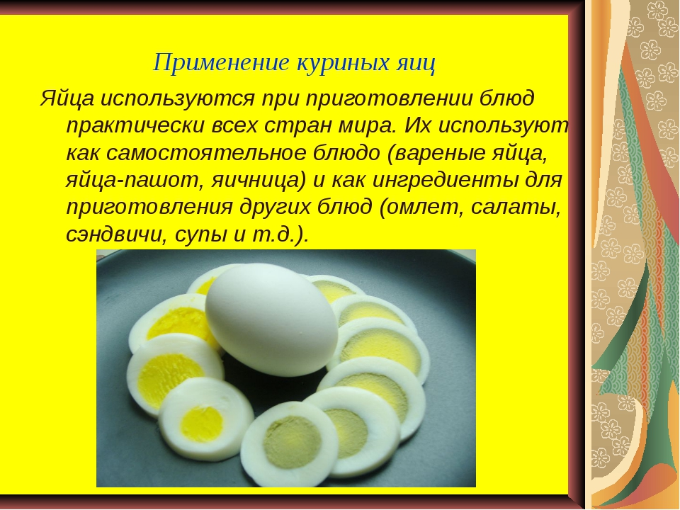 Применение куриных яиц Яйца используются при приготовлении блюд практически в...