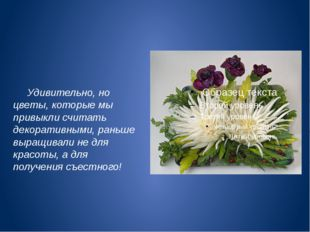 Удивительно, но цветы, которые мы привыкли считать декоративными, раньше выр
