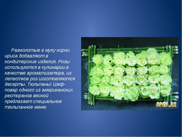 Размолотые в муку корни ириса добавляют в кондитерские изделия. Розы использ...