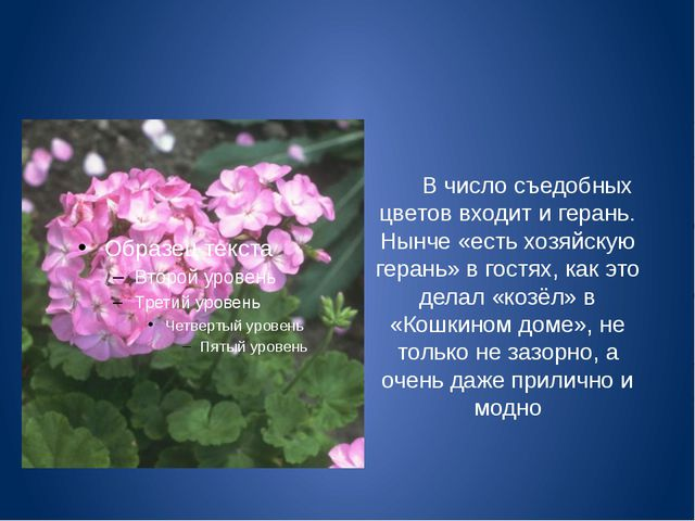 В число съедобных цветов входит и герань. Нынче «есть хозяйскую герань» в го...