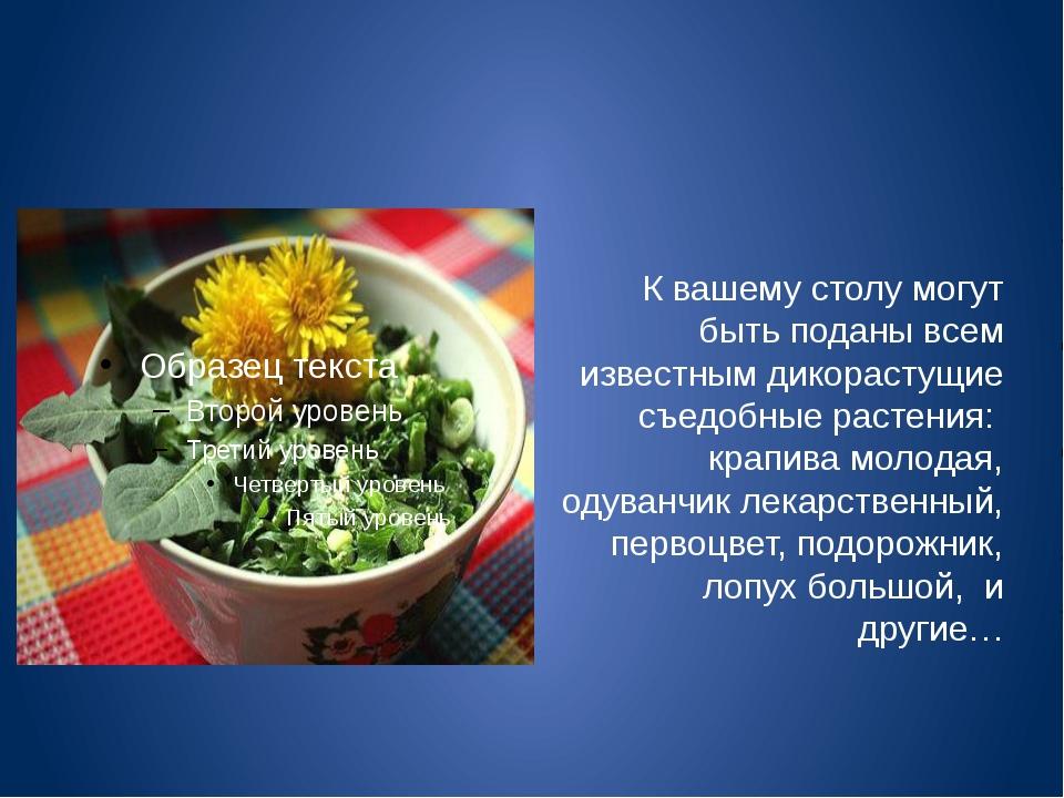 К вашему столу могут быть поданы всем известным дикорастущие съедобные расте...