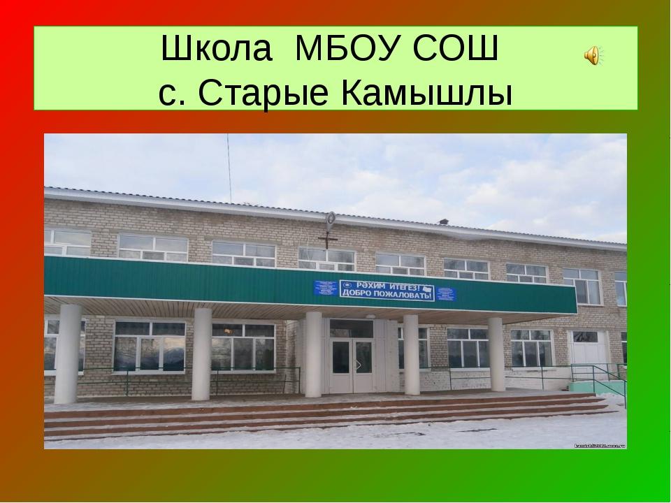 Школа МБОУ СОШ с. Старые Камышлы