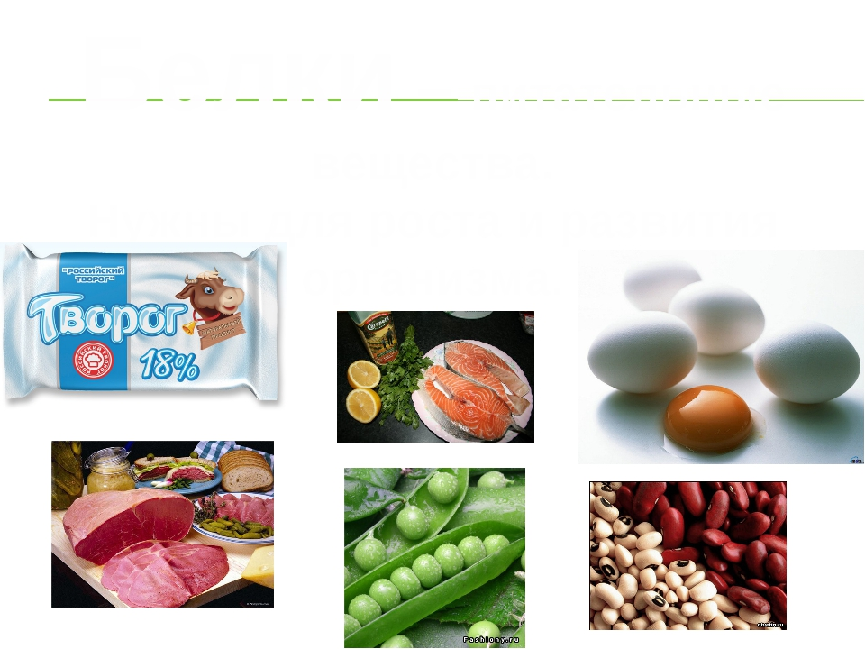 Белки – питательные вещества. Нужны для роста и развития организма.