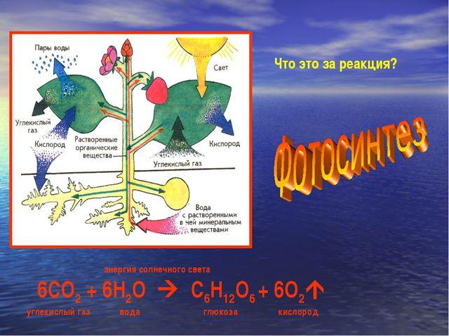 Что это за реакция? энергия солнечного света 6СО2 + 6Н2О  С6Н12О6 + 6О2 уг...