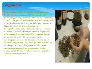 Қолданылуы. Медицинада шөптің жер бетіне шығатын бөлігі пайдаланылады. Кейде