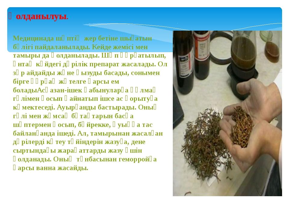 Қолданылуы. Медицинада шөптің жер бетіне шығатын бөлігі пайдаланылады. Кейде...