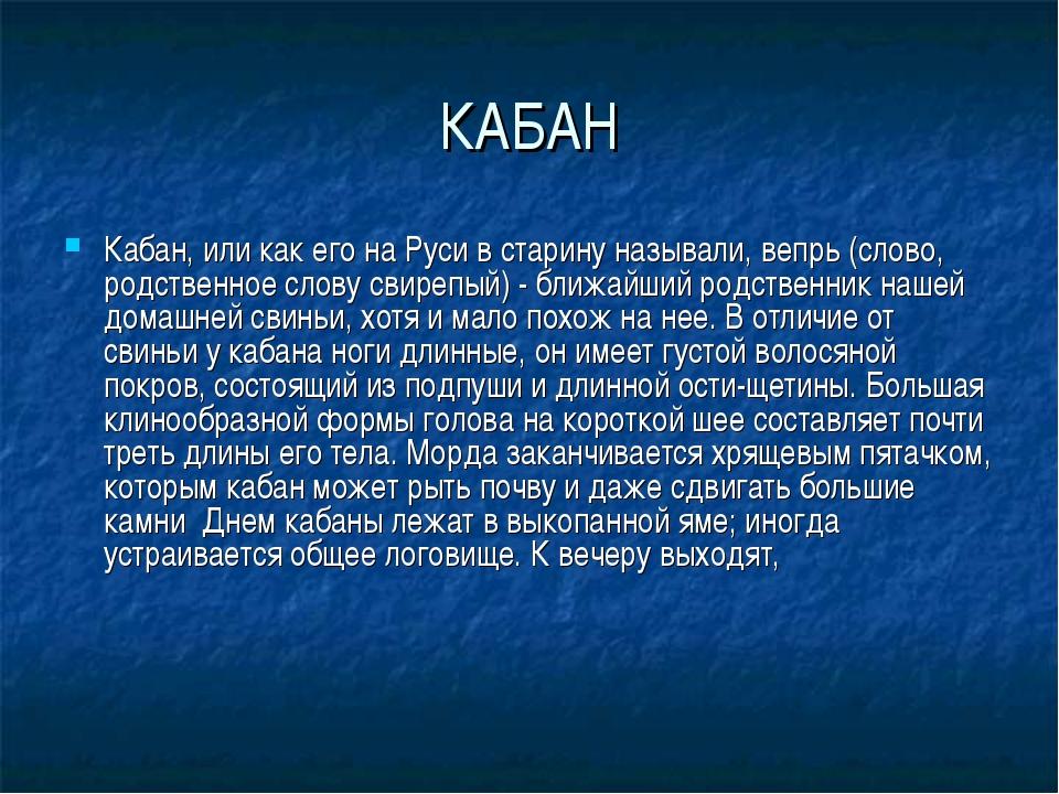 КАБАН Кабан, или как его на Руси в старину называли, вепрь (слово, родственно...