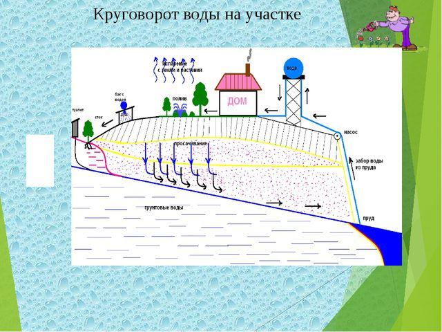 Круговорот воды на участке ?