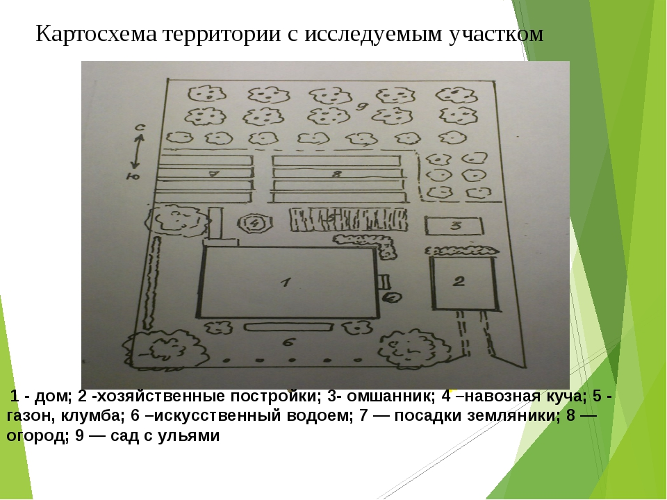 Картосхема территории с исследуемым участком смешанный лес колодец родник 1-...