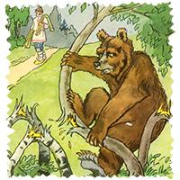 http://deti-online.com/images/basni-krylova--trudolyubivyy-medved.jpg