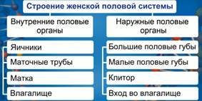 http://static.interneturok.cdnvideo.ru/content/konspekt_image/185382/be5163d0_8550_0132_69c4_12313c0dade2.jpg