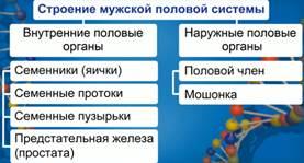 http://static.interneturok.cdnvideo.ru/content/konspekt_image/185377/b5a25e90_8550_0132_69bf_12313c0dade2.jpg