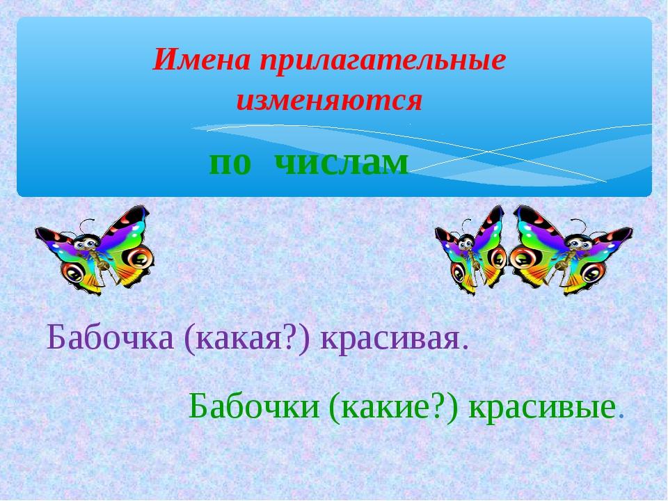 Имена прилагательные изменяются Бабочка (какая?) красивая. Бабочки (какие?) к...