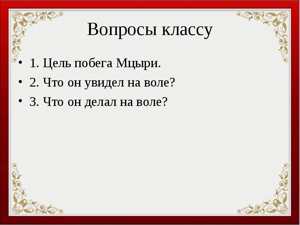 Вопросы классу 1. Цель побега Мцыри. 2. Что он увидел на воле? 3. Что он дела...