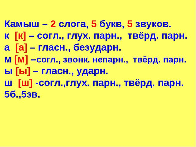 Камыш – 2 слога, 5 букв, 5 звуков. к [к] – согл., глух. парн., твёрд. парн. а...