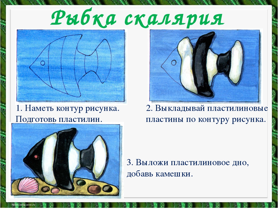 Рыбка скалярия 1. Наметь контур рисунка. Подготовь пластилин. 2. Выкладывай п...