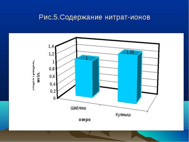 Рис.5.Содержание нитрат-ионов