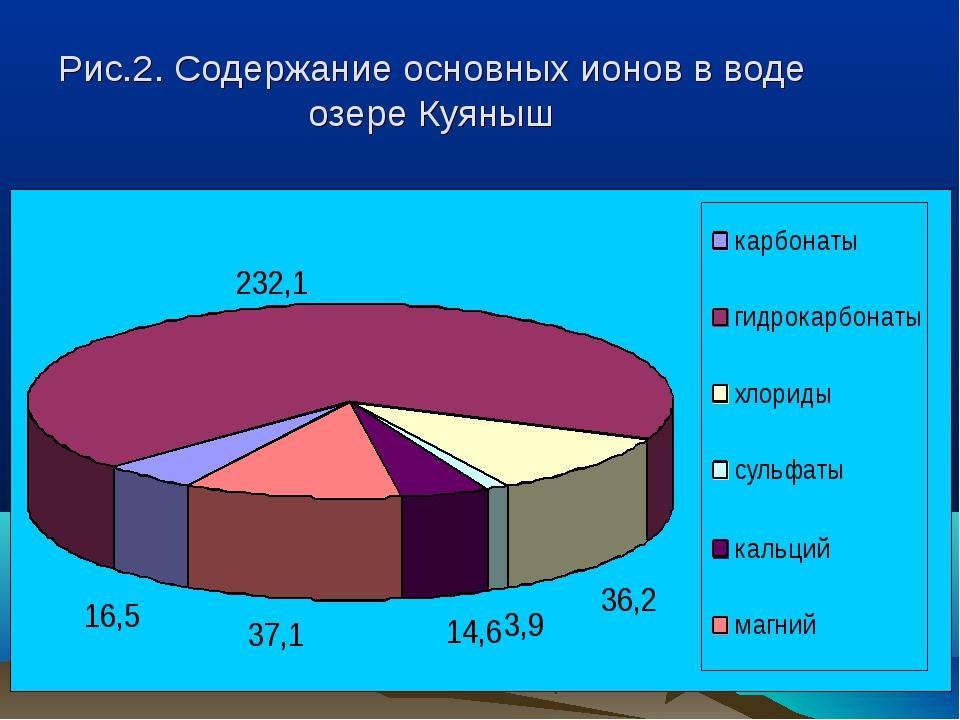 Рис.2. Содержание основных ионов в воде озере Куяныш