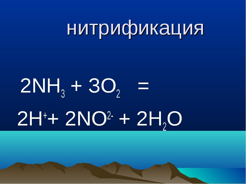нитрификация 2NН3 + ЗО2 = 2Н++ 2NO2- + 2Н2О
