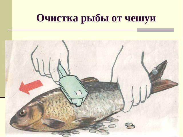 Очистка рыбы от чешуи