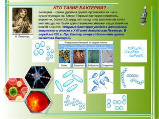 Бактерии – самая древняя группа организмов из ныне существующих на Земле. Пер