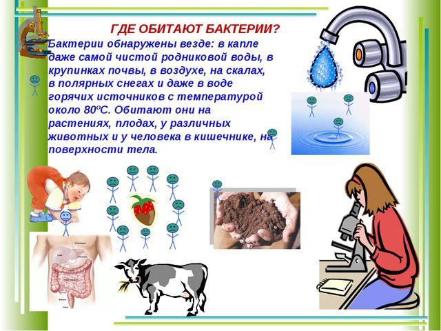 Бактерии обнаружены везде: в капле даже самой чистой родниковой воды, в крупи...