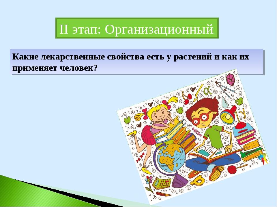 II этап: Организационный. Какие лекарственные свойства есть у растений и как...