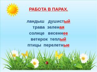 РАБОТА В ПАРАХ. ландыш душистый трава зеленая солнце весеннее ветерок теплый