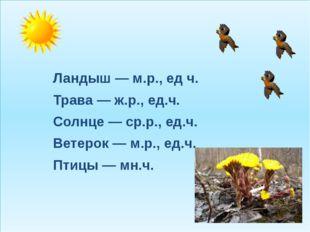 Ландыш — м.р., ед ч. Трава — ж.р., ед.ч. Солнце — ср.р., ед.ч. Ветерок — м.р