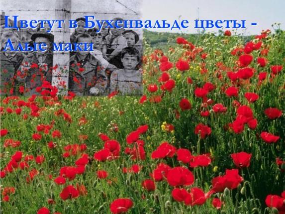 http://lusana.ru/files/2897/573/16.jpg