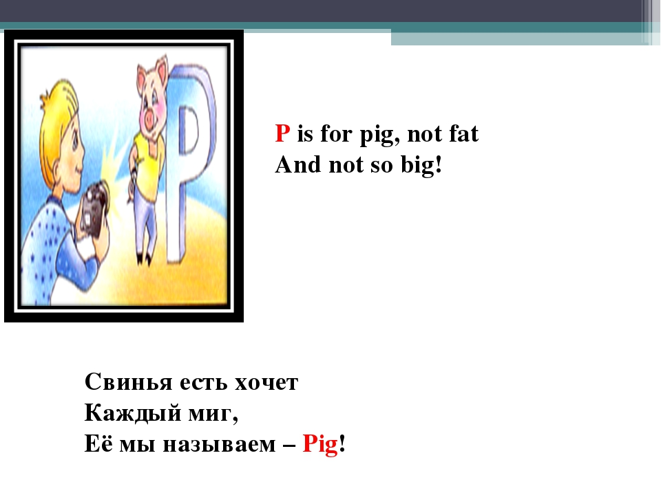 P is for pig, not fat And not so big! Свинья есть хочет Каждый миг, Её мы наз...