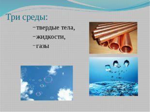 Три среды: твердые тела, жидкости, газы