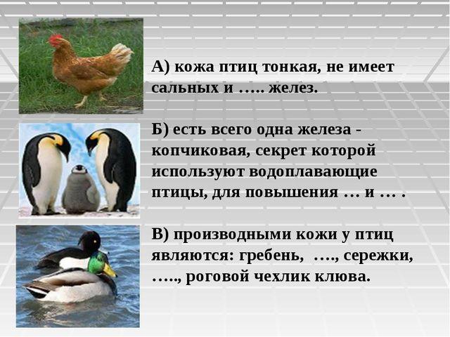 А) кожа птиц тонкая, не имеет сальных и ….. желез. Б) есть всего одна железа...