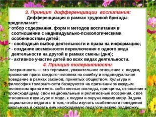 3. Принцип дифференциации воспитания: Дифференциация в рамках трудовой бригад