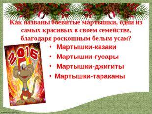 Мартышки-казаки  Мартышки-казаки  Мартышки-гусары  Мартышки-джигиты Марты
