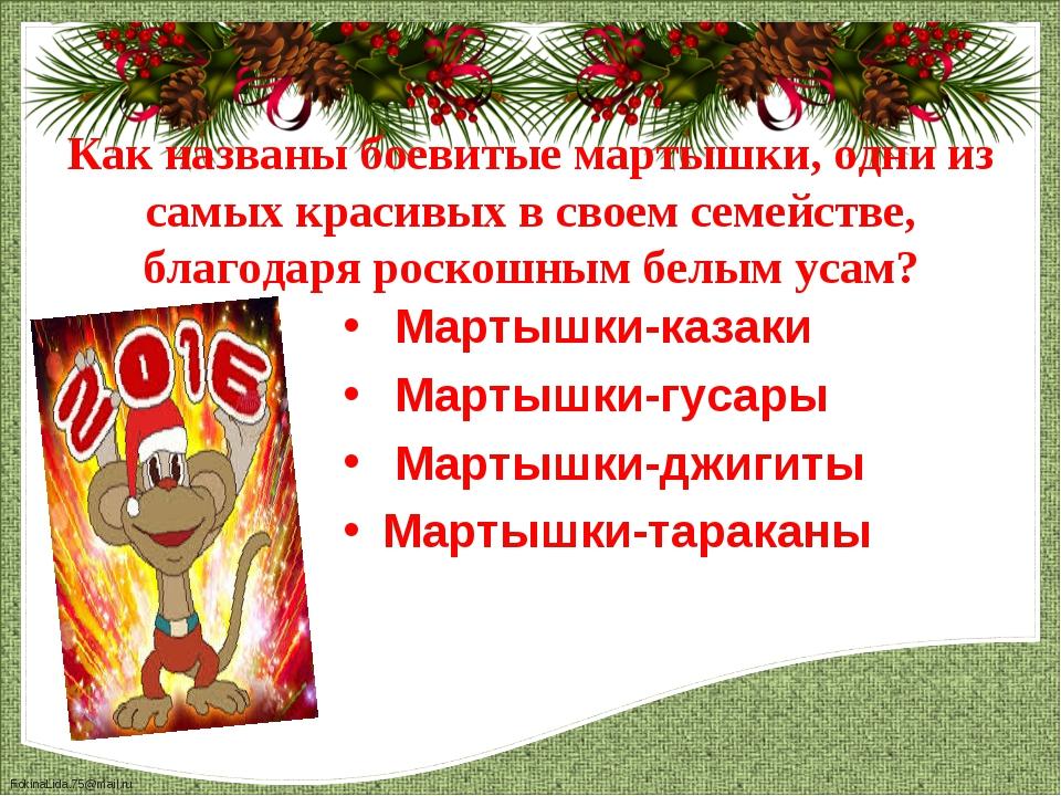 Мартышки-казаки  Мартышки-казаки  Мартышки-гусары  Мартышки-джигиты Марты...