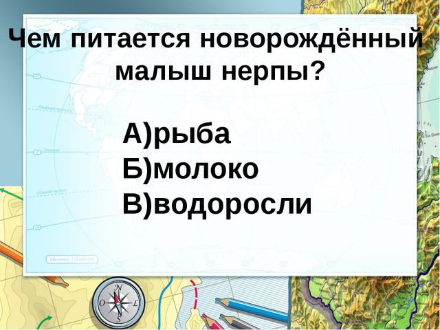 Национальные парки Забайкальский (охрана нерпы) Прибайкальский (изюбр) изюбр