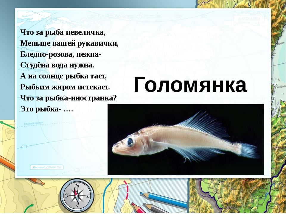 Что за рыба невеличка, Меньше вашей рукавички, Бледно-розова, нежна- Студёна...