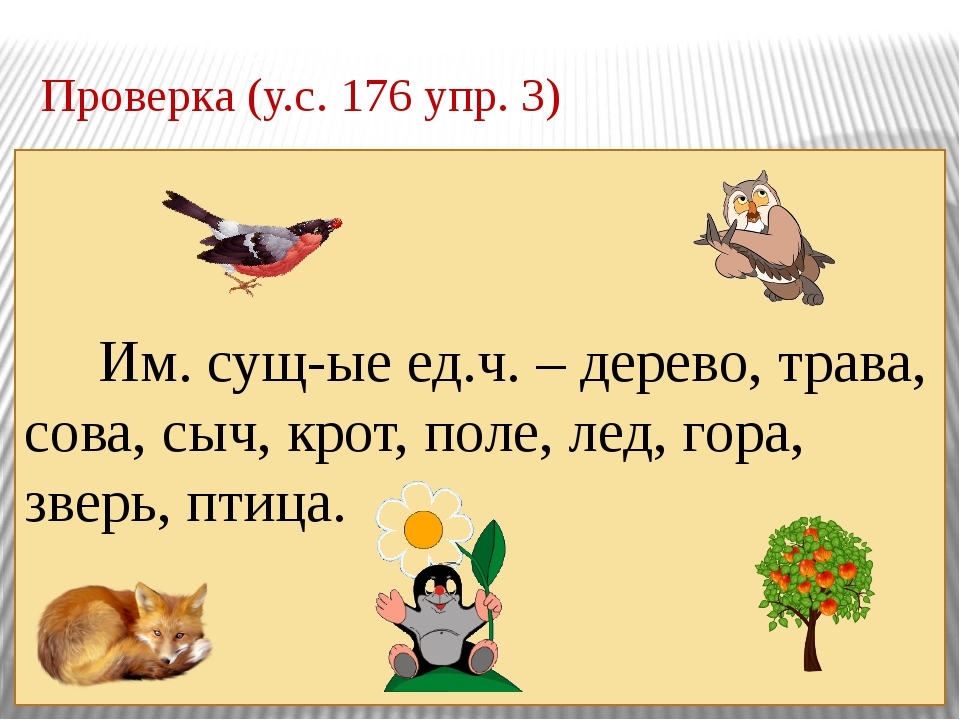 Проверка (у.с. 176 упр. 3) Им. сущ-ые ед.ч. – дерево, трава, сова, сыч, крот,...