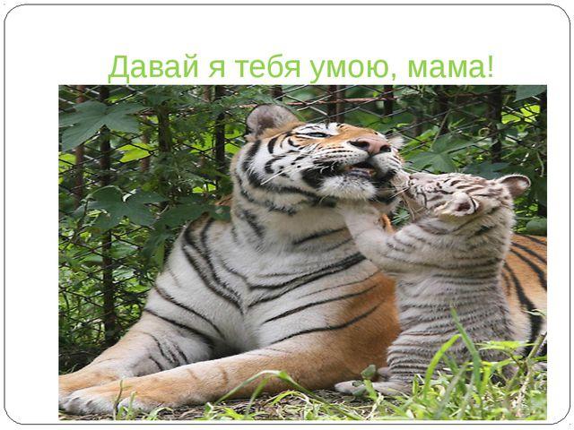 Давай я тебя умою, мама!
