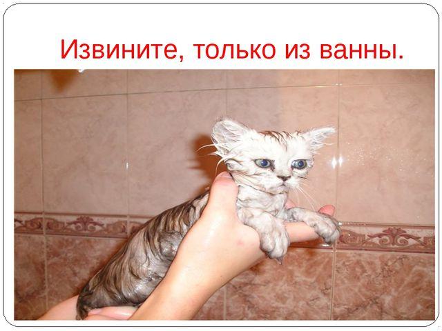 Извините, только из ванны.