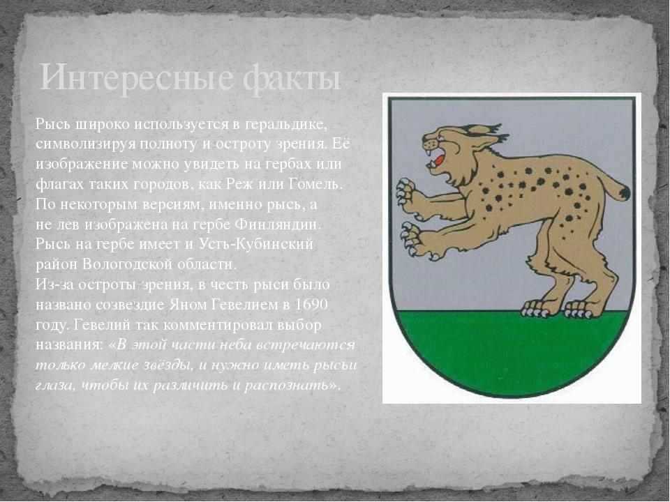Интересные факты Рысь широко используется вгеральдике, символизируя полноту...