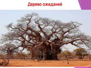 Дерево ожиданий